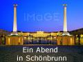 Ein Abend in Schönbrunn - Führung durch das Schloss, Dinner im Café-Restaurant Residenz und Schönbrunner Schlosskonzert