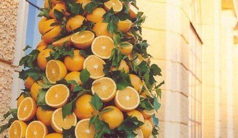 Una disposición de naranjas completas y medias que están colocadas en forma de torre en torno a una columna; al fondo, puede verse la mampostería de la Orangerie de viena