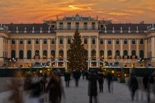 Details zu Weihnachtsmarkt und Konzert anzeigen