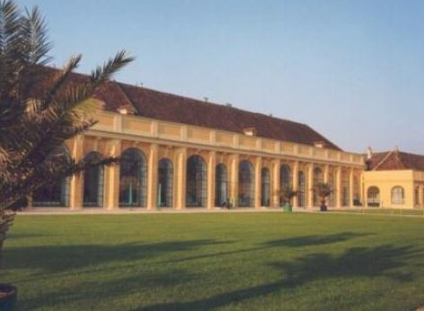 The Schoenbrunn Orangery - the concert location from the outside. A green lawn in front, the branch of a palm tree to the left, parts of the Orangery in the background, the location for the classical concerts.
