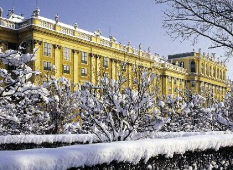View of Schoenbrunn Palace Vienna in winter. In the foreground, snow on the hedge and trees
