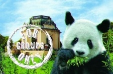 A panda from the zoo and a pavilion - above, a stamp for groups only